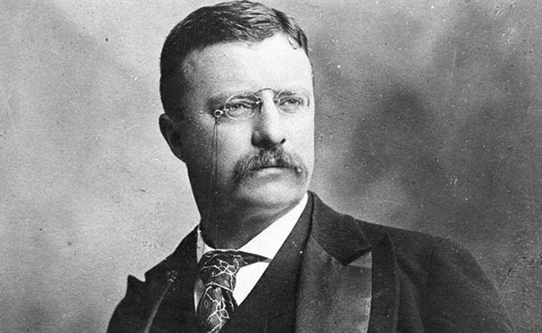 theodore roosevelt as a moderate The rockefeller republicans, also called moderate or liberal republicans, were  members of the republican party (gop) in the 1930s–1970s who held.