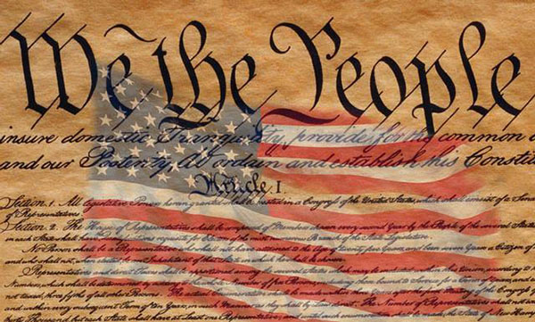 what are the principles of the us constitution world history